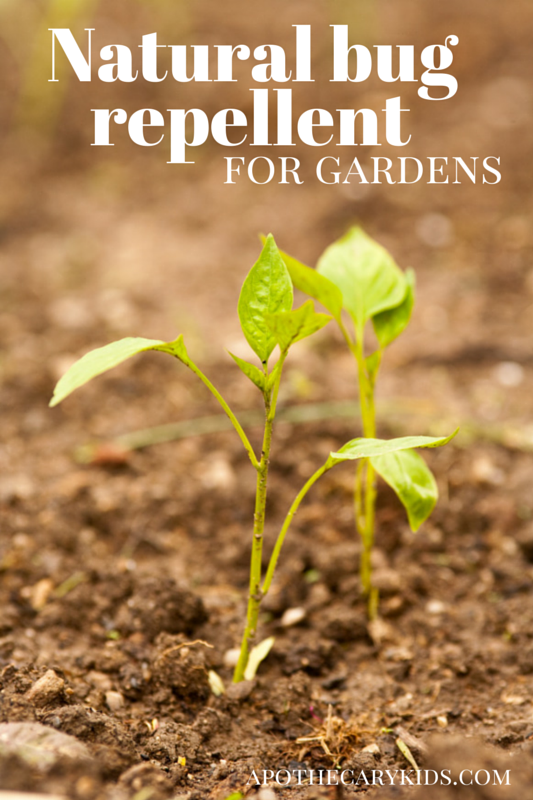 natural bug repellent for gardens