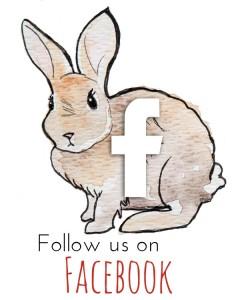 bunny_facebook