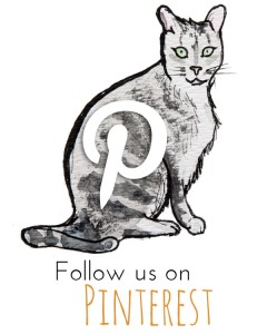 kitty_pinterest